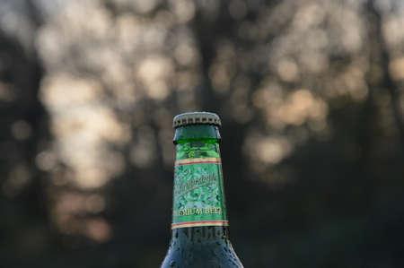 illustrative water drops on bottle beer Staropramen