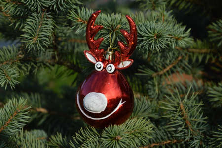decorative ball raindeer for decorating christmas trees Stock Photo