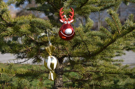 decorative ball raindeer and ball candy for decorating christmas trees