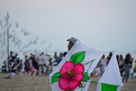 combines: Cervia, Italy - May 2, 2015: International Kite Festival 2015, since 1981 the best kite masters of the world meet in spring on the beach of Cervia; like every year the sky is full of kites from around the world for this festival That combines fantasy and  Editorial