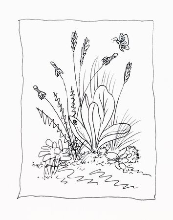 intimate: Intimate, close-up, stylized line drawing of weeds and insects.