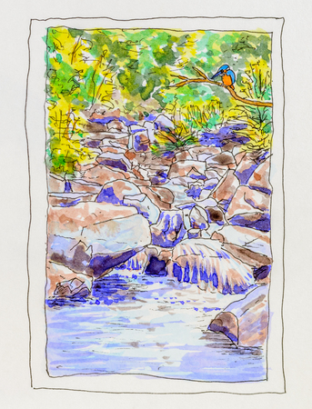 rocky: Kingfisher perched by rocky stream. Original pen and coloured ink painting.