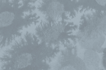feelers: Grey abstract background. Creeping flower design.