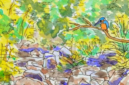 アート ・背景シーン カワセミ鳥、岩のストリームおよび群葉を持つ。オリジナルのペンとインクのアートワーク。