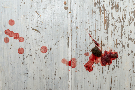 stool blood: Faeces from a dog with colitis, Showing blood, mucus and excrement. Drops of blood from the liquid dripping. On a rustic white wooden floor.