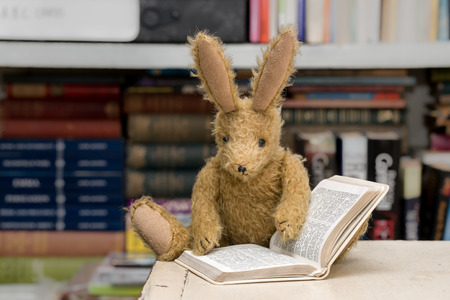Vintage toy bunny rabbit reading a book in front of a blurred background of books on shelves. Studying, reading concept. Stock Photo