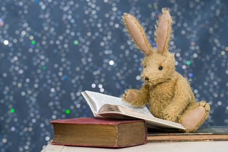 Cute toy rabbit with long ears reading books. Blue bokeh background. Story time, childs reading, learning concept