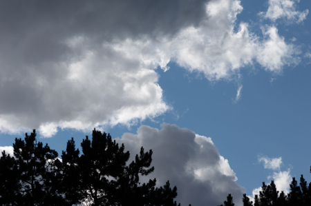 Stormy clouds with blue sky and tree silhouettes. Moody weather with both dark grey clouds and contrasting brightly lit white clouds. Stock Photo