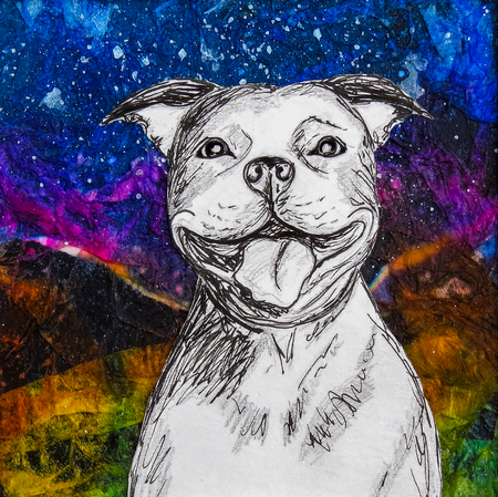 White smiling staffy dog drawing on colourful night background. Original artwork mixed media collage.