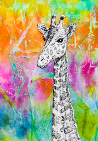 White giraffe drawing on bright rainbow colored background. Original artwork mixed media collage.