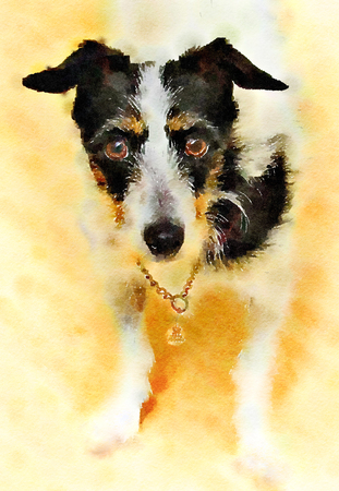 Watercolor painting of a Jack Russell Terrier dog. Standing looking forward with bright background. Vertical. Stock Photo