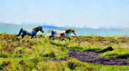 Watercolour landscape painting of wild ponies on the moors with a foal. Фото со стока