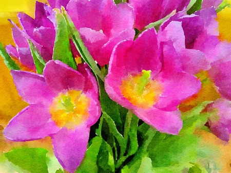 Watercolour painting of brightly coloured flowers. Beautiful pink and yellow tulips close up.
