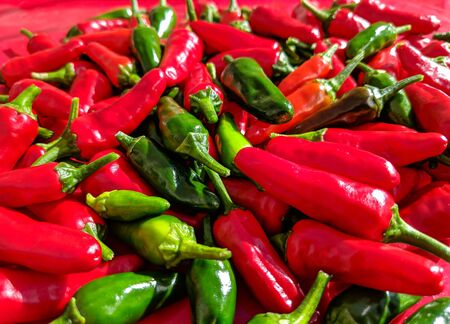 Red and green chilli peppers. Close up of the freshly picked fruits. Blurred background.