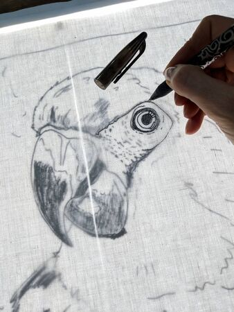 Drawing a parrot with gel pen on back lit fabric. Close up of technique to copy outline of an image onto fabric using a light box, for crafts such as collage quilting. Vertical. 免版税图像
