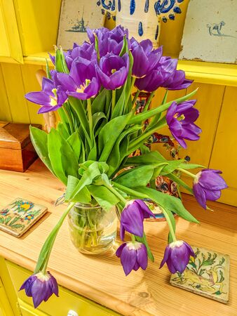 Vase of brightly coloured flowers on a yellow cottage Welsh dresser. Beautiful purple tulips close up.