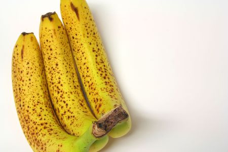 bad banana: three rotten bananas (the top of the stem, where the 3 come together is in focus)