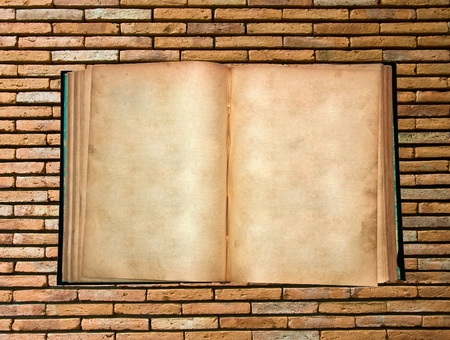The Vintage book isolated on brick wall background photo