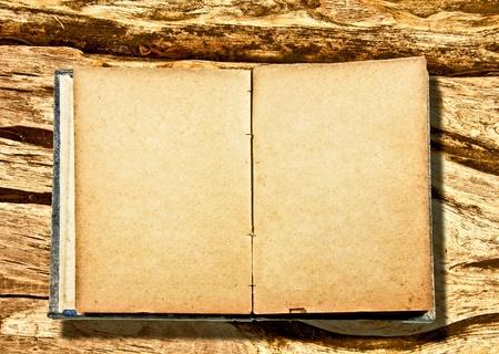 L'�bauche du Vieux portable isol� sur fond de bois
