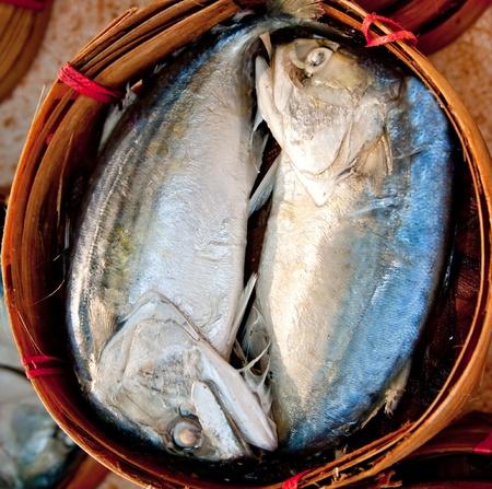 The Mackerel fish Stock Photo - 10869450