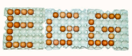 The Egg on paper tray photo