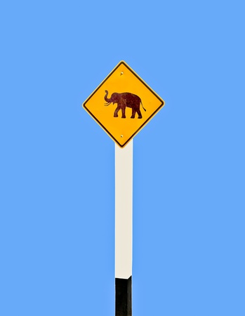 The Guidepost of elephant  photo