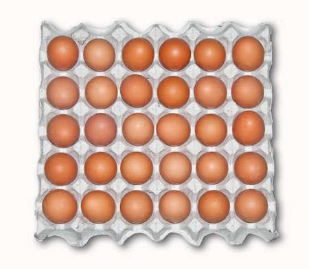 The Large tray of fresh eggs isolated on white background photo