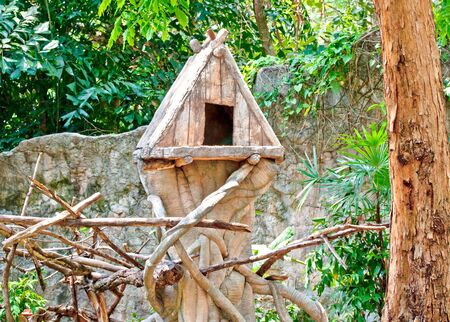 The Wooden of birdhouse on tree photo