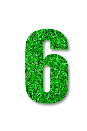 The Number of six green grass isolated on white background photo