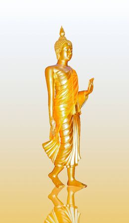 The Buddha status stand isolated on reflect background photo