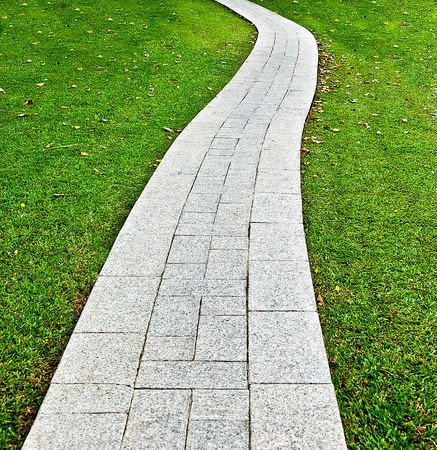 The Walk path in the park with green grass background photo