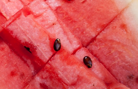 The Close up water melon Stock Photo - 12309622