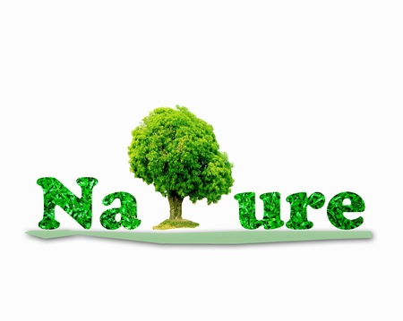The Green nature letters surrounded by green tree isolated on white background photo