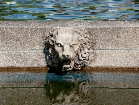 The Head rock lion on pool photo