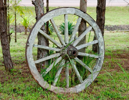 wagon: The Old wood cartwheel