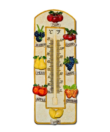The Thermometer fruit model isolated on white background photo