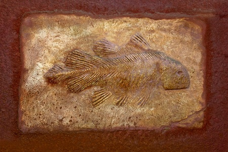 The Model fossil of ancient fish photo