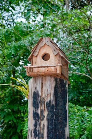 The Wooden house of bird on log wood photo