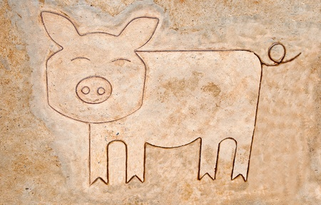 The Iron pattern line of pig on cement floor Stock Photo - 13598047
