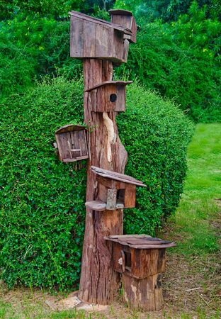 The Wooden of birdhouse family photo