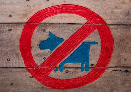 beware of the dog: The Sign of no dog  on wood background