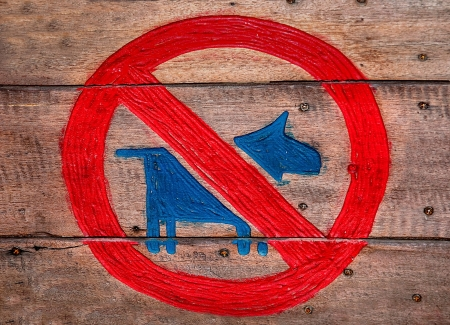 domestics: The Sign of no dog  on wood background