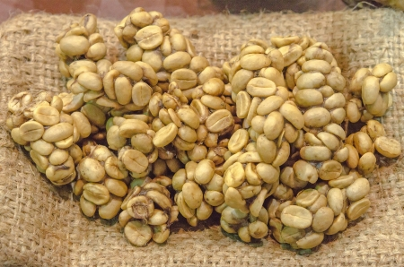 Coffee beans - Civet coffee - Kopi Luwak