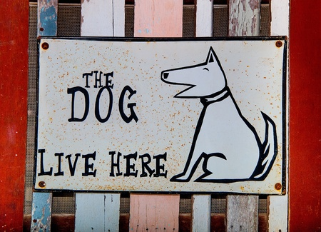 Sign dog live here photo