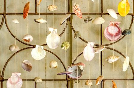 Curtains of Sea shells Stock Photo - 21405999