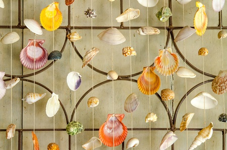 Curtains of Sea shells photo