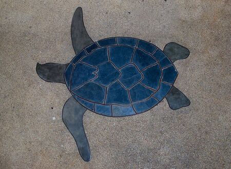 stylistic embellishments: Sign of turtle on floor background