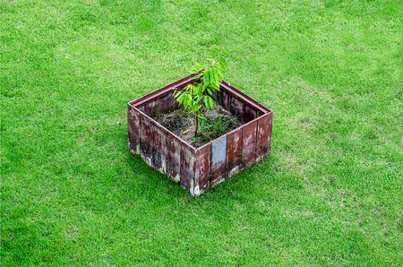 Wooden pot on green grass photo