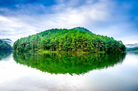 View of Pang Ung Forestry Plantation at mae hong sont province,Thailand photo