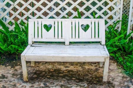 White wooden bench in park photo